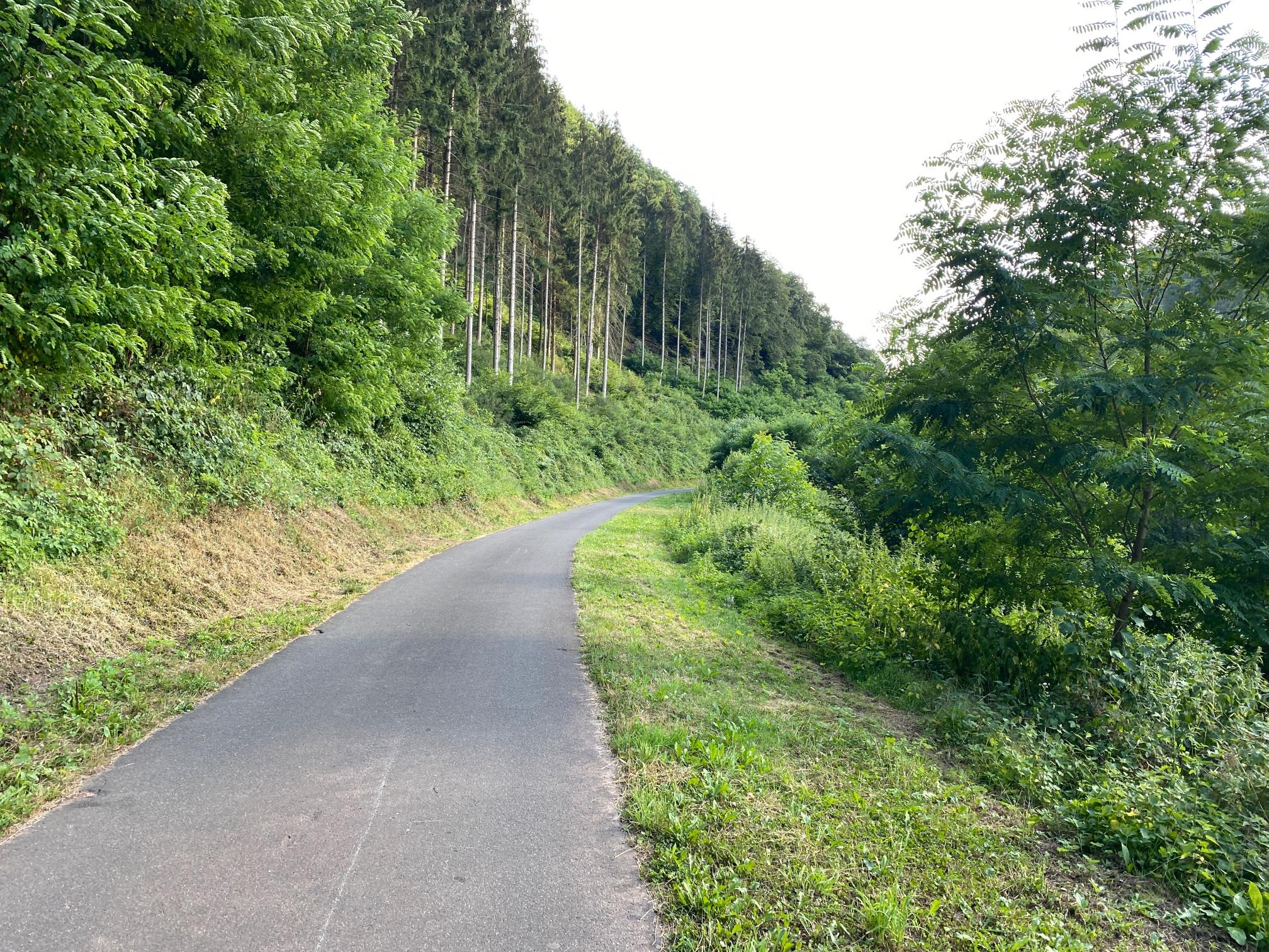 Der Felsenweg von Kyllburg bis zur Deimlinger Mühle